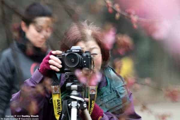Passionate Photographer by Teddy Kwok